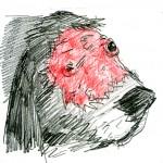chien decharne