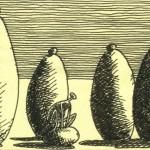 Le conseil des pierres