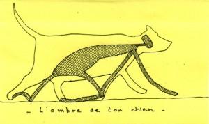 ombre de ton chien
