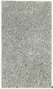 anoese11 gris fin encre sur papier MdC 21 X 35cm